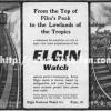 Elgin【エルジン】の広告 -1901年-